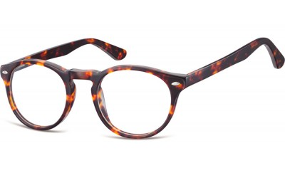 Kunstoff Brille CP148
